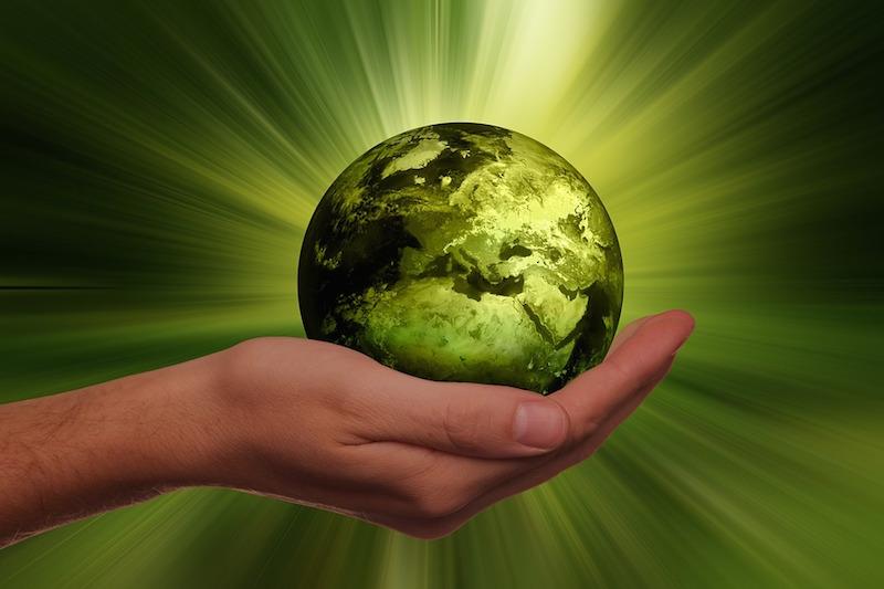 Imprese italiane promosse in sostenibilità: più virtuose di quelle Usa